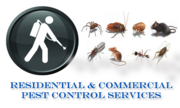 BED BUG ALERT ! Pest Extermination from North Essex pest control